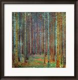 Tannenwald (Pine Forest), 1902 Framed Giclee Print by Gustav Klimt