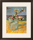 Blossoming Almond Branch in a Glass, c.1888 Framed Giclee Print by Vincent van Gogh