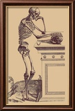 Leaning Skeleton Art by Andreas Vesalius