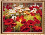 Meadow Poppies II Framed Giclee Print by Lucas Santini
