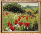 Sunlit Meadow Framed Giclee Print by Mary Dipnall