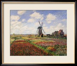 Tulip Fields with the Rijnsburg Windmill, 1886 Gerahmter Giclée-Druck von Claude Monet
