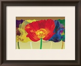 Poppy Tango Prints by Robert Mertens