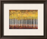 Golden Aspens Art by Robert Holman