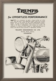 Triumph of Effortless Performance Print