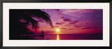 Sunset, Palm Trees, Beach, Water, Ocean, Montego Bay Jamaica Framed Photographic Print by  Panoramic Images