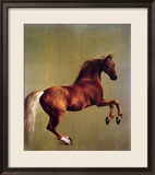 Whistlejacket, 1762 Lmina gicle enmarcada por George Stubbs