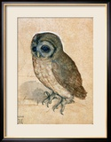 Sreech-Owl, 1508 Framed Giclee Print by Albrecht D&#252;rer