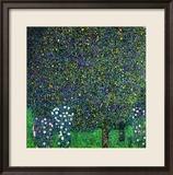 Roses Under the Trees, circa 1905 Gerahmter Giclée-Druck von Gustav Klimt