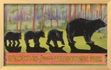 Greetings from Yellowstone National Park, Bears Framed Giclee Print