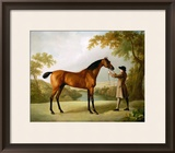 Tristram Shandy, a Bay Racehorse Held by a Groom in an Extensive Landscape, circa 1760 Framed Giclee Print by George Stubbs