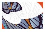 Shadowed Wing of Iris Giclee Print by Belen Mena