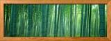 Bosque de bambú, Sagano, Kioto, Japón Lámina fotográfica enmarcada por Panoramic Images,