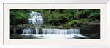 Liffey Falls, Tasmania, Australia Framed Photographic Print by  Panoramic Images