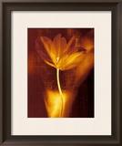 Bronze Tulip I Poster by John Butler