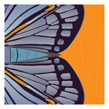 Tangerine Iris Giclee Print by Belen Mena