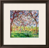 Printemps a Giverny, 1903 Framed Giclee Print by Claude Monet