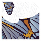 Iris Moth Design Giclee Print by Belen Mena