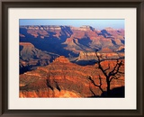 Grand Canyon from South Rim Near Yavapai Point, Grand Canyon National Park, Arizona Framed Photographic Print by David Tomlinson