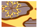 Fly to Amoeba Giclee Print by Belen Mena