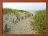 Path at Head of the Meadow Beach, Cape Cod National Seashore, Massachusetts, USA Framed Photographic Print by Jerry & Marcy Monkman