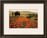 Hills of Tuscany I Prints by Steve Wynne