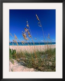 Grace Bay Beach, Turks &amp; Caicos Islands Framed Photographic Print by Timothy O&#39;Keefe