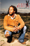 Ziggy Marley (Dragonfly) Music Poster Print Prints