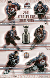 Colorado Avalanche 2001 Stanley Cup Champions Sports Poster Print Prints