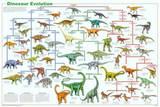 Dinosaur Evolution Educational Science Chart Poster Fotografie