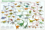 Dinosaur Evolution Educational Science Chart Poster Póster