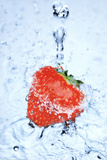 Strawberry on Ice Splash Art Print Poster Print