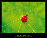 Ladybug (Achievement) Art Poster Print Poster