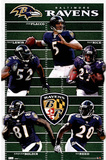 Baltimore Ravens Team Field Sports Poster Print Posters