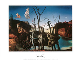 Des Elephant Prints by Salvador Dalí