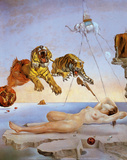 Dream Caused by the Flight of a Bee a Second Before Awakening Print by Salvador Dalí