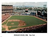 Ira Rosen New York Mets Pennant Fever Shea Stadium 1986 Sports Poster Print Posters