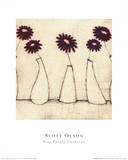 Five Purple Gerberas Prints by Scott Olsen