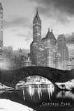 New York City Central Park Bridge 3-D Lenticular Photo Print Poster Prints
