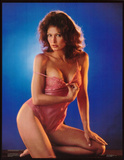 Sexy Pin-Up Brunette, Debora Zullo in Pink Lingerie, Photo Print Poster Prints