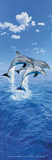 Steve Bloom (Three Dolphins) Art Poster Print Poster