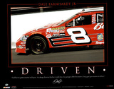 Dale Earnhardt Jr (Driven) Sports Poster Print Posters