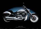 Harley Davidson VRSCA V-Rod Art Print Poster Print