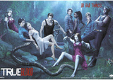 True Blood Do Bad Things 3-D Lenticular TV Poster Print Póster