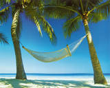 Paradise (Hammock on Beach) Art Poster Print Poster