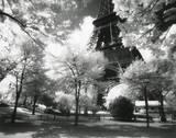 Afternoon in Paris (Eiffel Tower, Park) Kunstdrucke