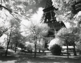 Afternoon in Paris (Eiffel Tower, Park) Posters