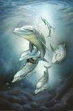Dolphins of the Deep Art Print Poster Posters