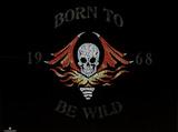Steppenwolf (Born to be Wild Lyrics) Music Poster Print Poster