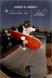 Skateboarding Degrees of Lameness Sports Poster Print Prints